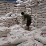 Philippines to sharply cut 2011 rice imports