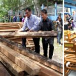 280,000 seized lumber to be converted to school chairs