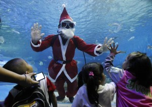 A professional diver dressed as Santa Claus interacts with children while swimming inside a giant aquarium as part of Christmas celebrations at the Manila Ocean Park November 28, 2013. The Philippines, a mainly Roman Catholic country in Southeast Asia, prepares for Christmas early - shopping malls start playing Christmas carols in September and lanterns and fireworks are put up in early December.  (MNS photo)