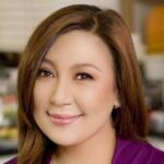 Sharon Cuneta has had enough, leaves Twitter