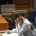 Cayetano twits VP Binay: Why not bug JPE, Jinggoy?