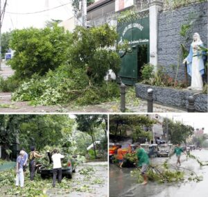 Wind-blown mango tree branches nearly block the gate of the Porta Coali Convent (top photo) along Visayas Ave., Quezon City on Wednesday (July 16, 2014). Lower photos show Department of Environment and Natural Resources (DENR) employees loading on a pick-up truck mahogany tree branches (left) and residents of Aurora Blvd. near the Chinese Medical Center cleaning up a portion of Blumentritt St., Sta. Cruz, Manila. (MNS photo)