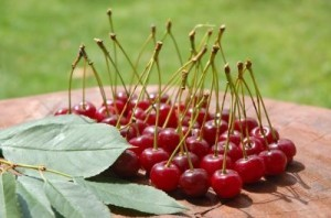Cherries are at the center of a summer festival in Michigan. ©eAlisa/shutterstock.com