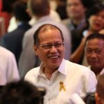 Aquino gets DAP-like powers in 2015 budget