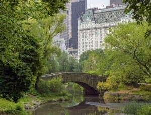 Central Park, New York New York is the most popular US destination for international visitors. ©John A. Anderson/shutterstock.com