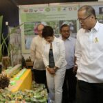 PHL 'breaks world tree-planting record'