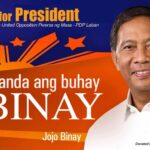 Stop Nognog 2016: Binay camp blasts 'conspiracy'