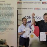 UNA 'not in any position' to influence Comelec over Poe's disqualification: Honasan